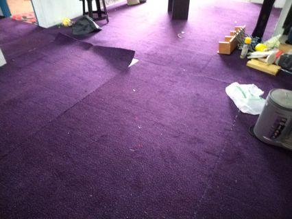 Carpet over 500 square ft for sale