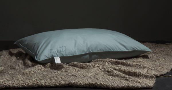 (Was RM300) Duck Down Pillow