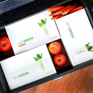 🚚 SoyGreen (36g x 30 packages)