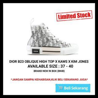 Dior B23 Oblique High Top X Kaws X Kim Jones