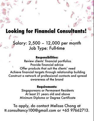 Hiring Financial Consultants