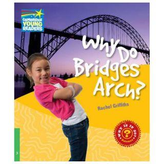 Why Do Bridges Arch? Level 3