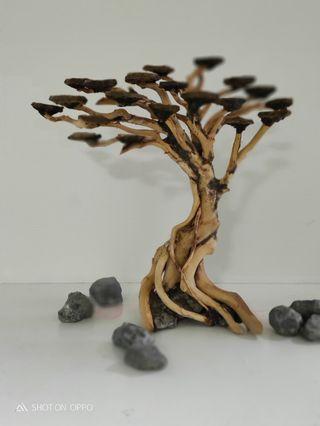 Bonsai tree wood for aquarium for sale (m3)