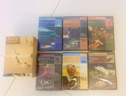 QYOP - Educational DVDs on Wild Animal predators