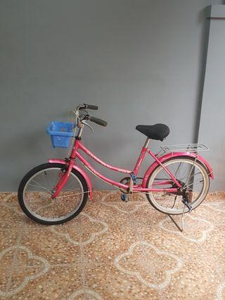 Sepeda anak 20 inch