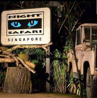 🚚 Night safari ticket