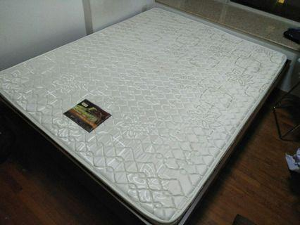 Anti bug queen mattress