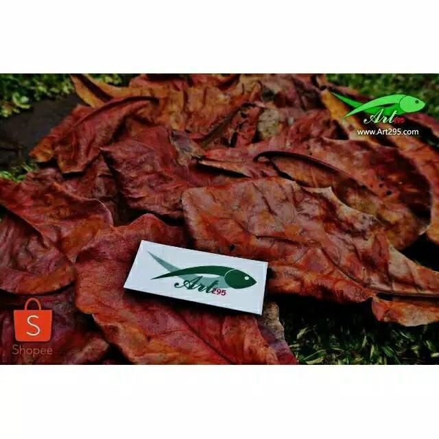 Ekstrak Daun Ketapang Merah Indian Almond 250ml