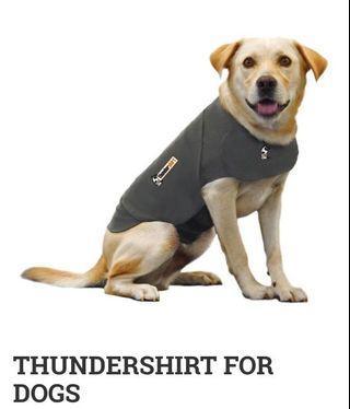 🇺🇸 美國直郵「Thundershirt打雷衣