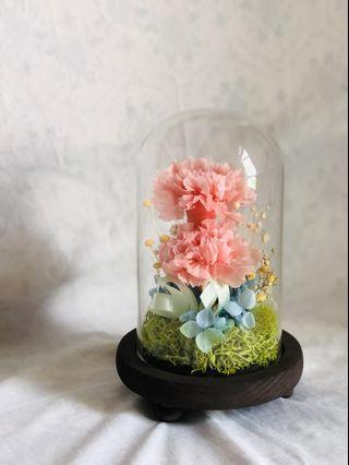 INSTOCK Preserved Pink Carnations in Rustic Wooden Glass Dome