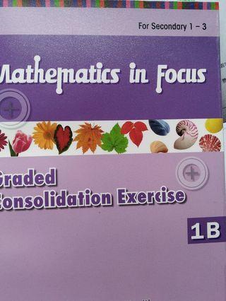 (100%全新)Mathematics in focus Graded Consolidation Exercise 1B