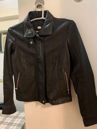 Leather Jacket - Massimo Dutti