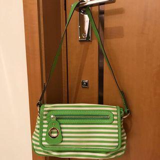 Kate Spade Bag (Light Green Striped)
