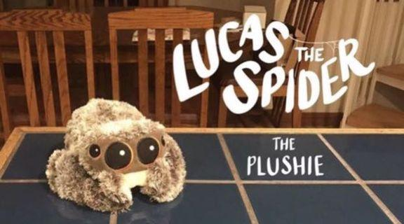 🚚 Lucas the spider plushie