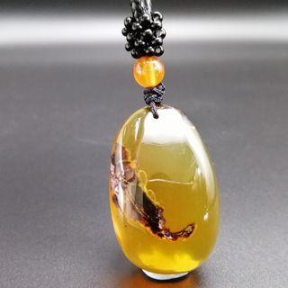 🚚 Burma Natural Amber necklace 緬甸金棕植物珀 横财就手