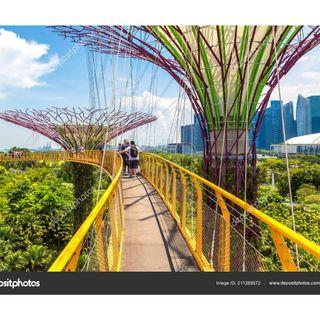 🚚 Gardens by the Bay - 3 tickets available (only genuine buyers pls)- Exp: Nov 2019