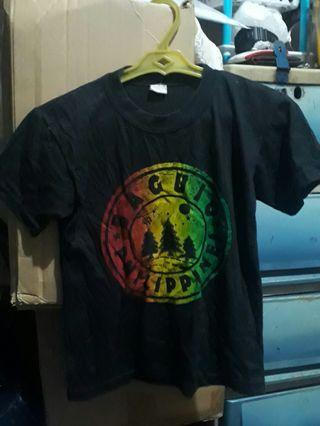 Size to softex t shirt