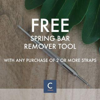 🔴GSS🔴🌟Watch Tool - Spring Bars Strap Link Band Remover Repair Kit - Metal