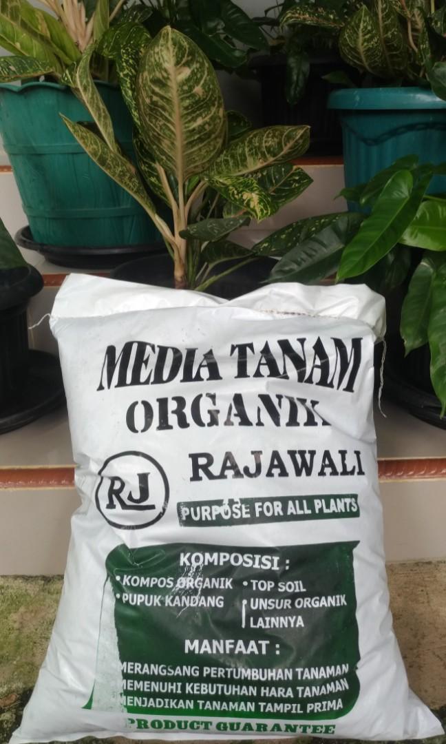 Media Tanam pupuk organik