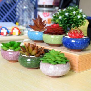 [NEW] Cute Ice-Crack Glaze Flower Ceramics Succulent Plant Mini Pot Garden Flowerpot