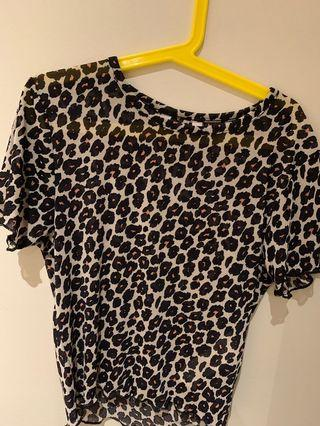 Mesh Cheetah Print Crop Top