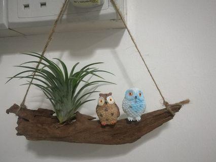 Hanging Airplant Decoration