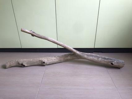4ft driftwood