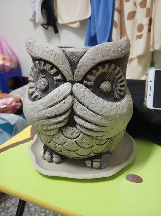 貓頭鷹花盆