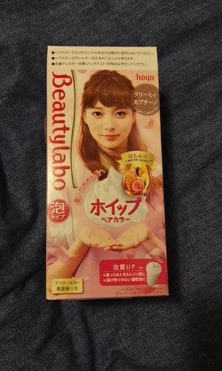Japanese brand new hair dyer
