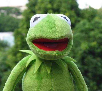 kermit the frog 青蛙 毛公仔