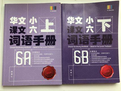 6A&B SL Ed 华文课本 词语手册 (2017)