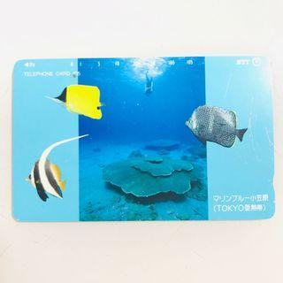絕版珍藏日本NTT電話卡🐠亞熱帶魚海洋 紀念卡 JAPAN FISH NEMO OCEAN TELEPHONE CARD