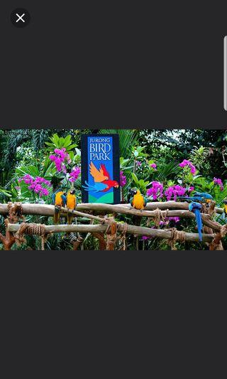 Jurong bird park open dated ticket