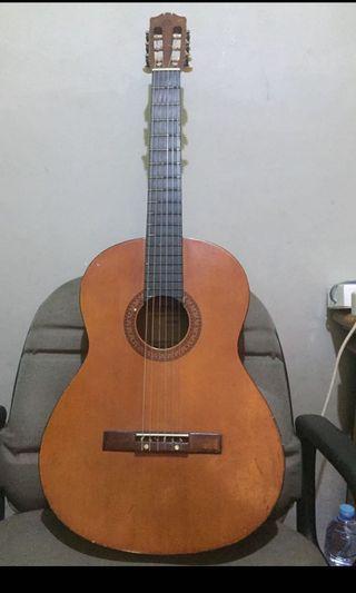 Gitar Yamaha C310