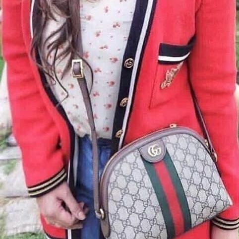 Gucci Bag Ophidia oval Made in italy Ori leather 100% mulus yaaa