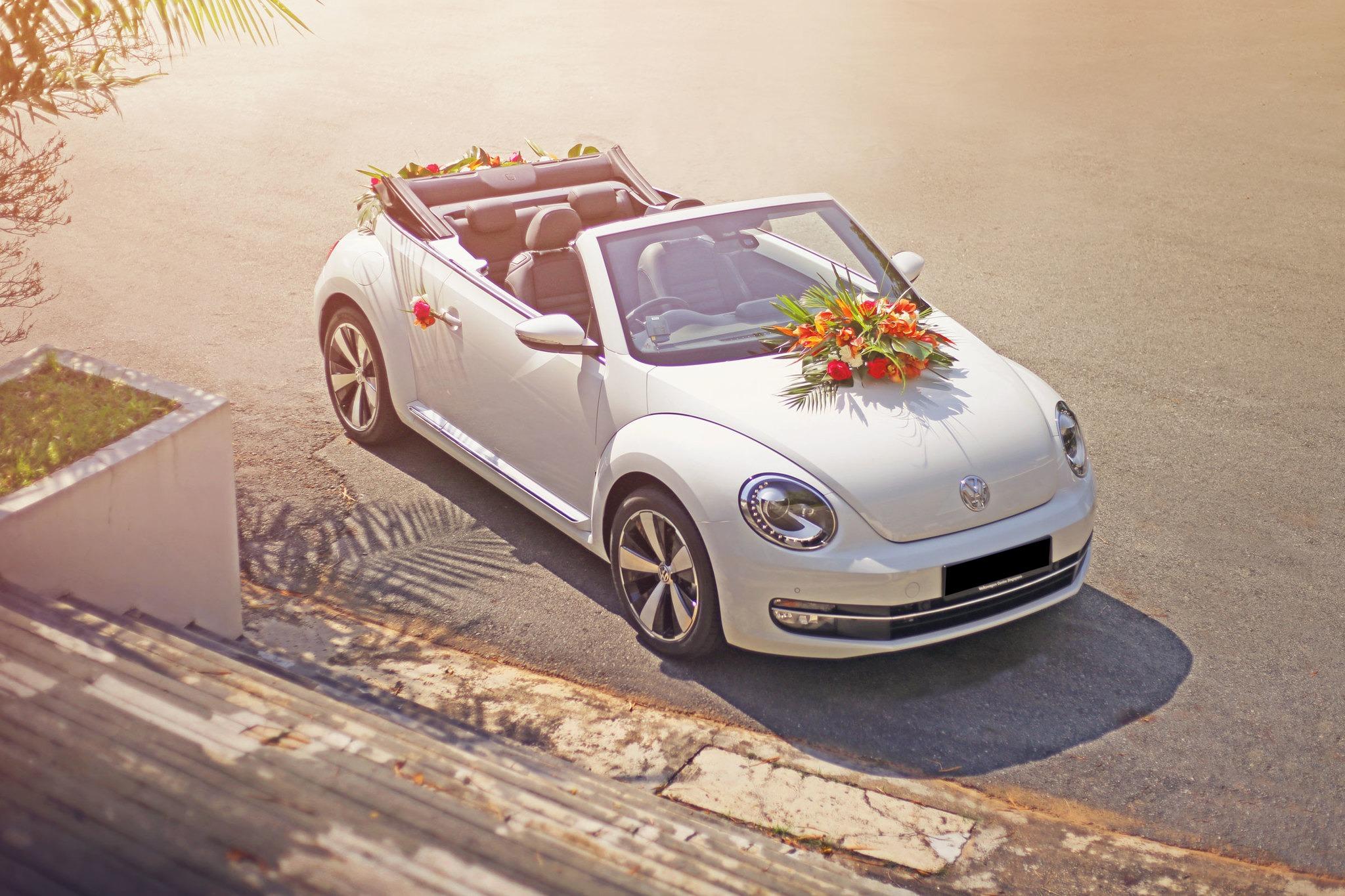 Volkswagen Beetle Cabriolet 1 2 Dsg Cars Car Rental On Carousell