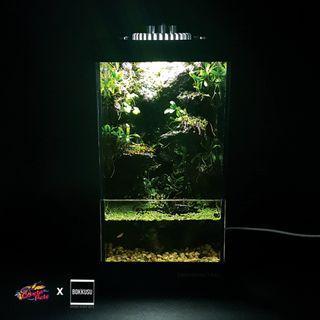 🚚 ボックス [BOKKUSU] - Urban Scape Kit - San [パルダリウム] USB Paludarium Kit 02