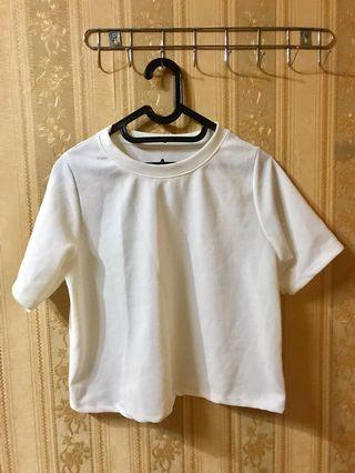 bigsize white crop top