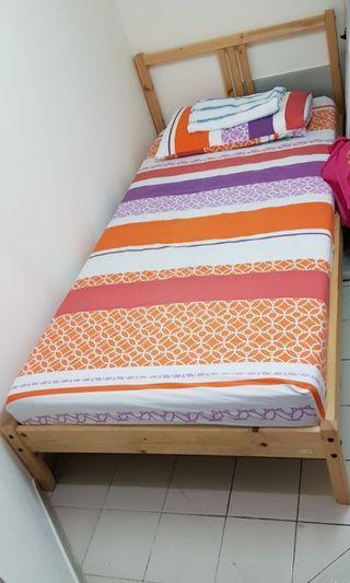 LAST 2 DAYS SALE! 最後兩日大減價! 單人床架連床褥 Single bed with mattress