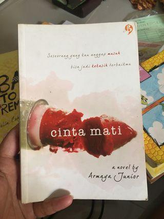 Novel by Armaya