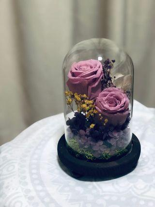 🌹 Real Preserved Purple Roses in Flower Dome