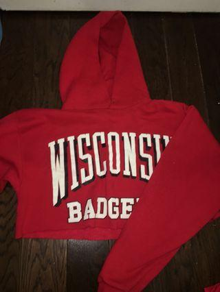 WISCONSIN cropped sweater