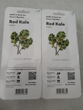 Click and Grow Red Kale pods