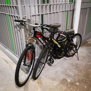 2 x adult mountain bikes