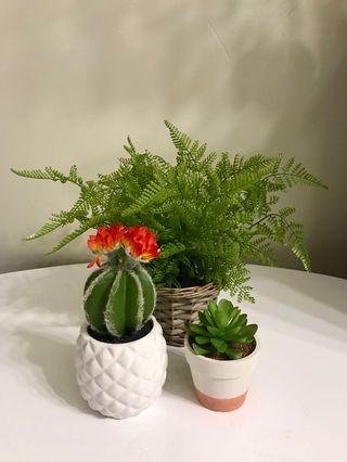 ARTIFICIAL PLANT SET