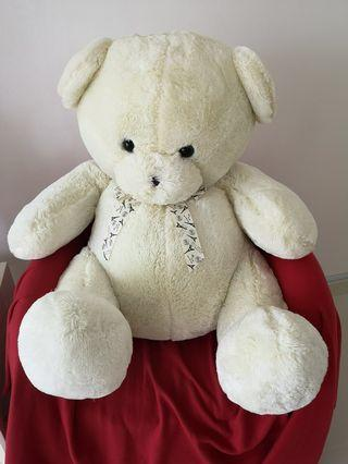🚚 Big Teddy Bear for adoption
