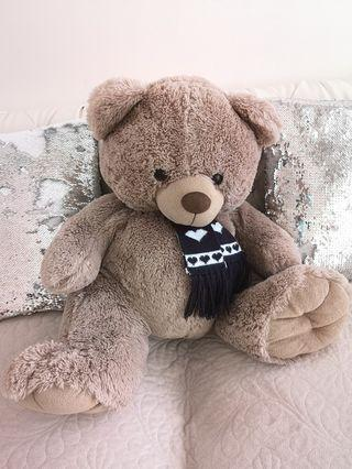 🚚 Teddy Bear for adoption
