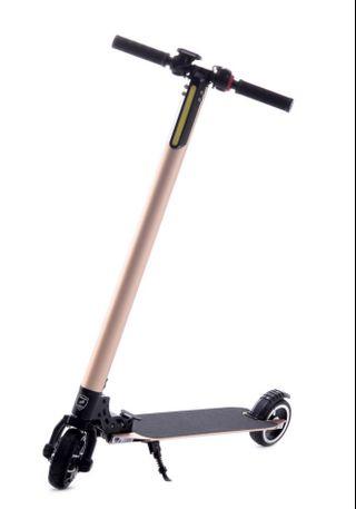 Aleoca E Potenza Alloy Electric Scooter EP-ALS (LTA Compliant)