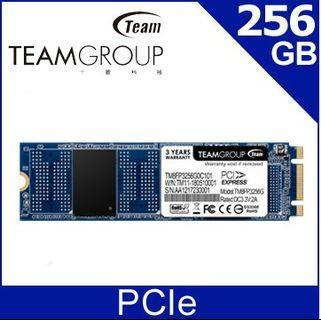 SSD PCIe 256G 十銓 固態硬碟 全新未拆封