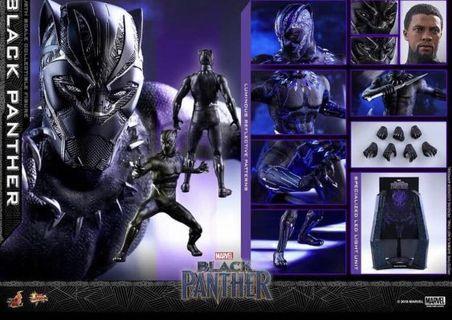 [全新]Hottoys 1:6 黑豹現貨 Black Panther Avengers 復仇者聯盟